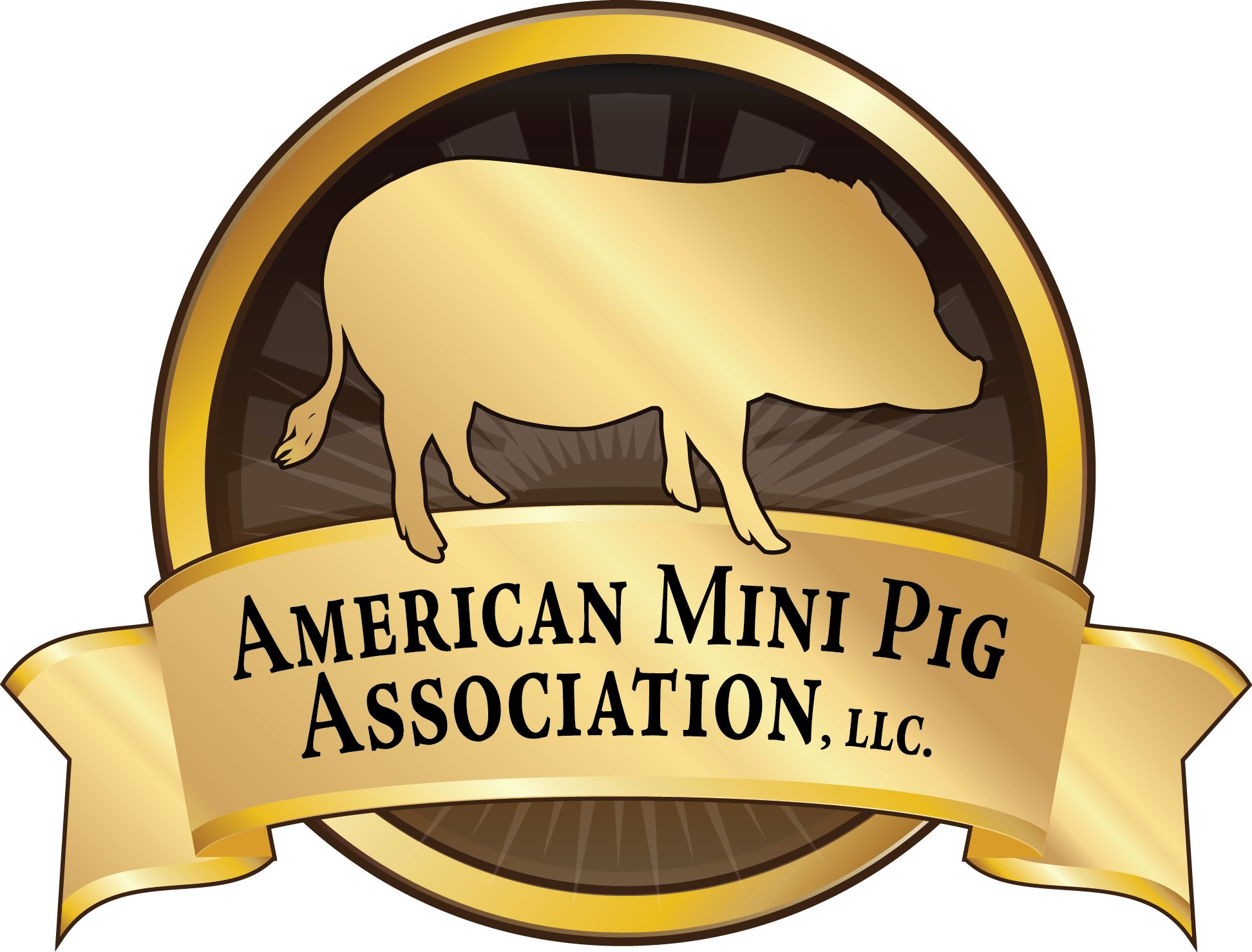 Become an American Mini Pig Association Member