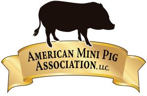 Short Logo Full Color on White (TRANSPARENT)