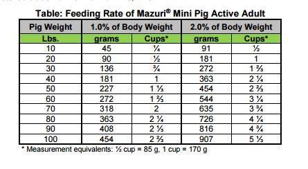 Mini Pig Nutrition American Mini Pig Association