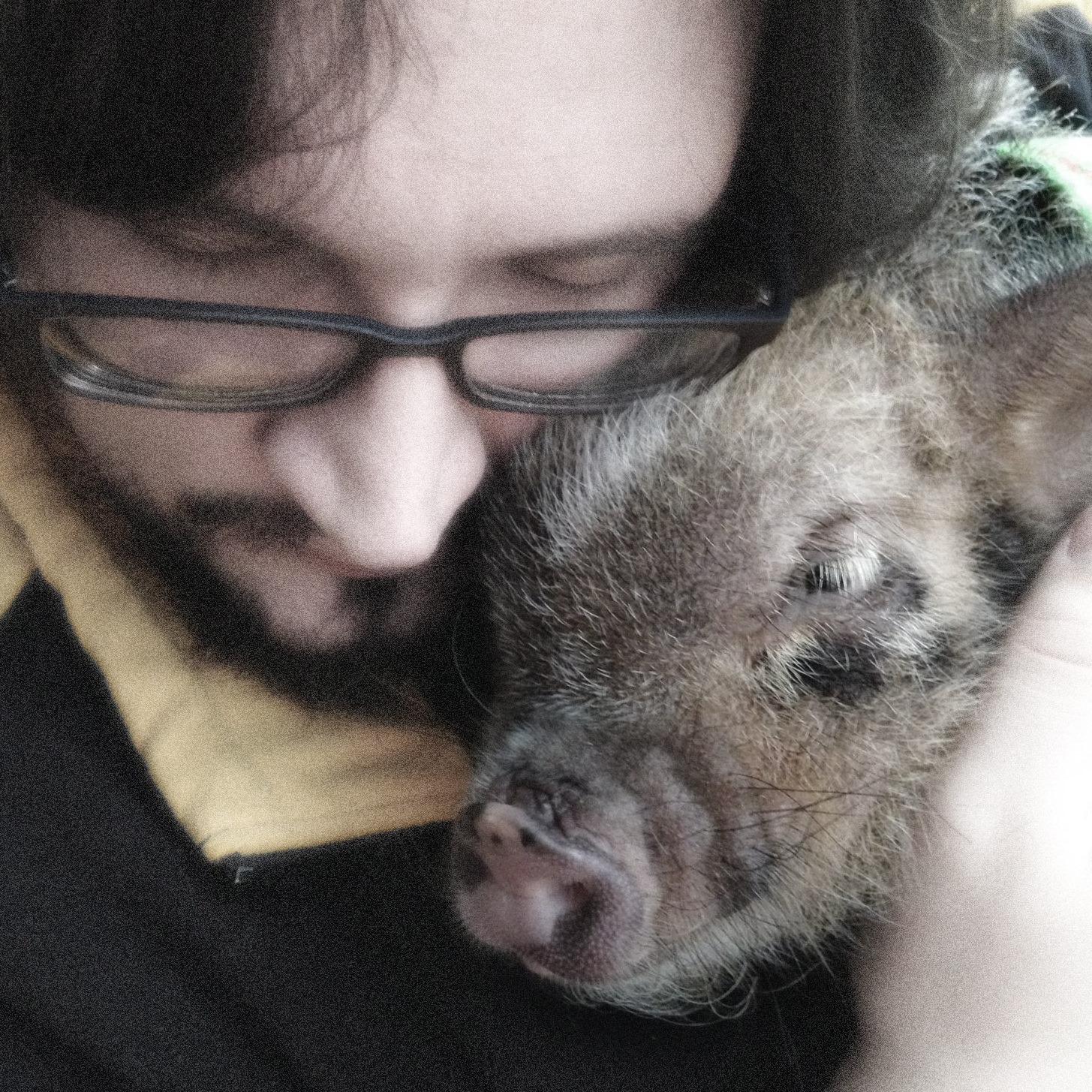 Kevin at American Mini Pig Association