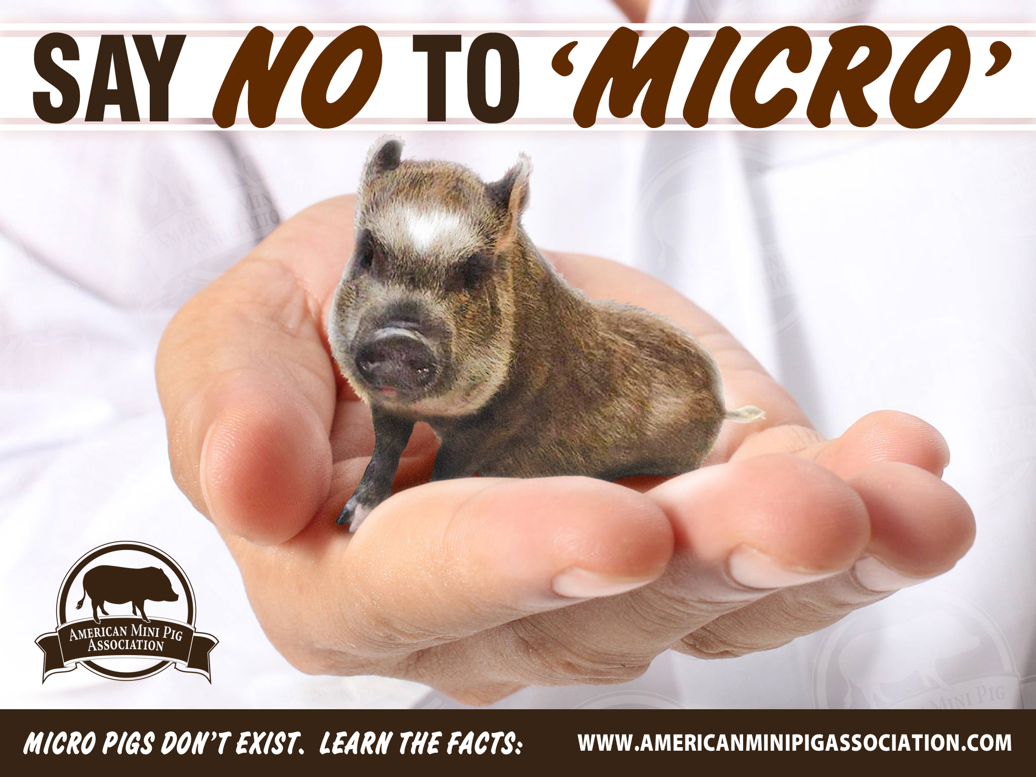 Say NO to 'Micro'