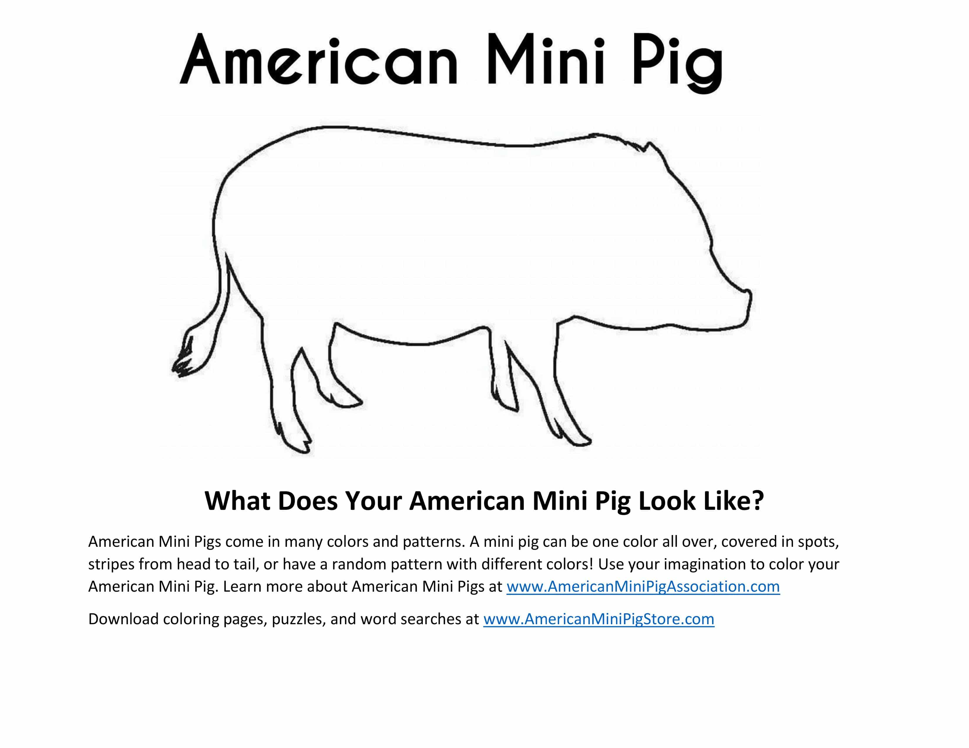 Mini Pig Coloring Page
