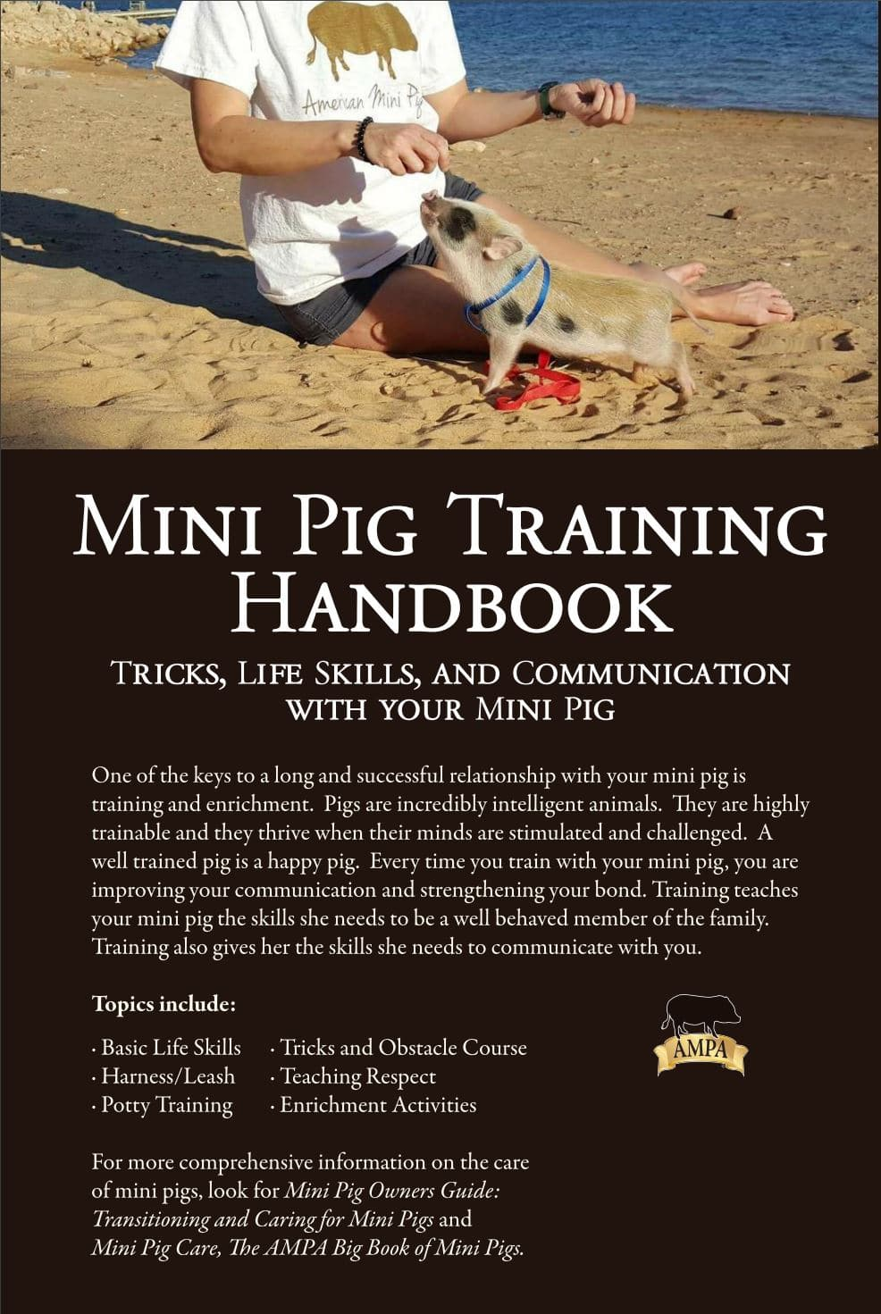 training-book-cover-back