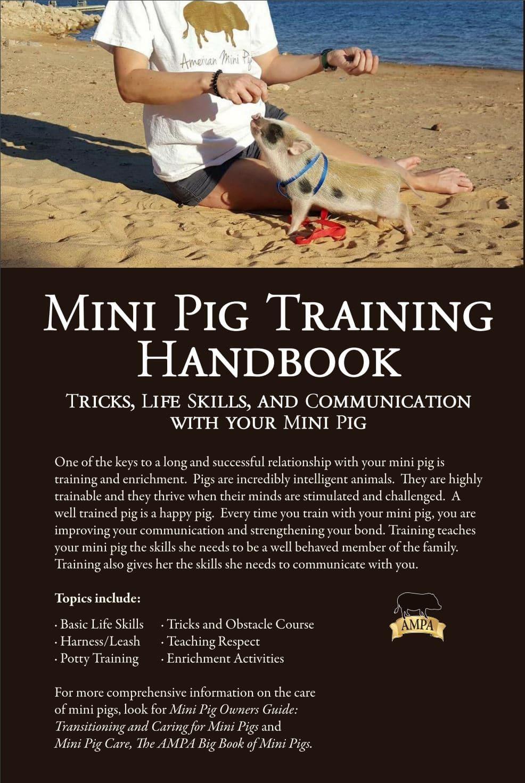 Move The Pig Technique - American Mini Pig Association