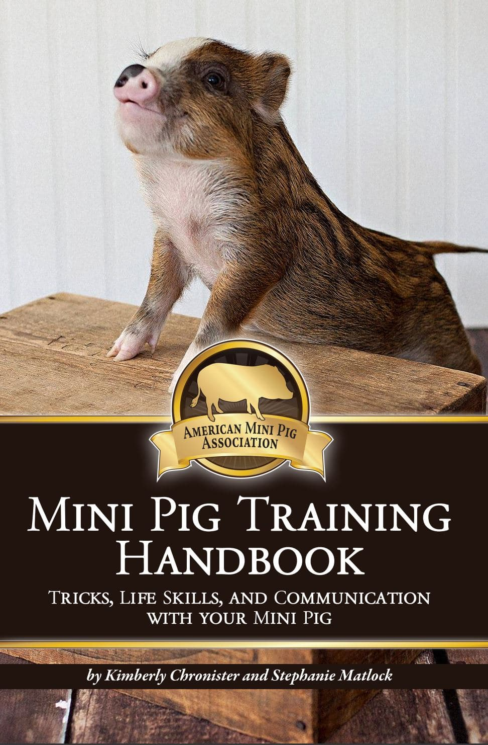 training-book-cover-front