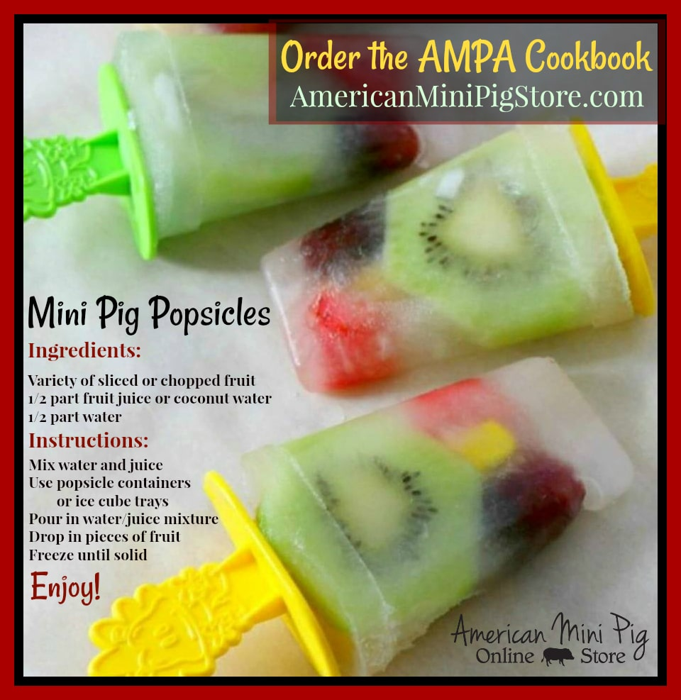 summer treat popsicles
