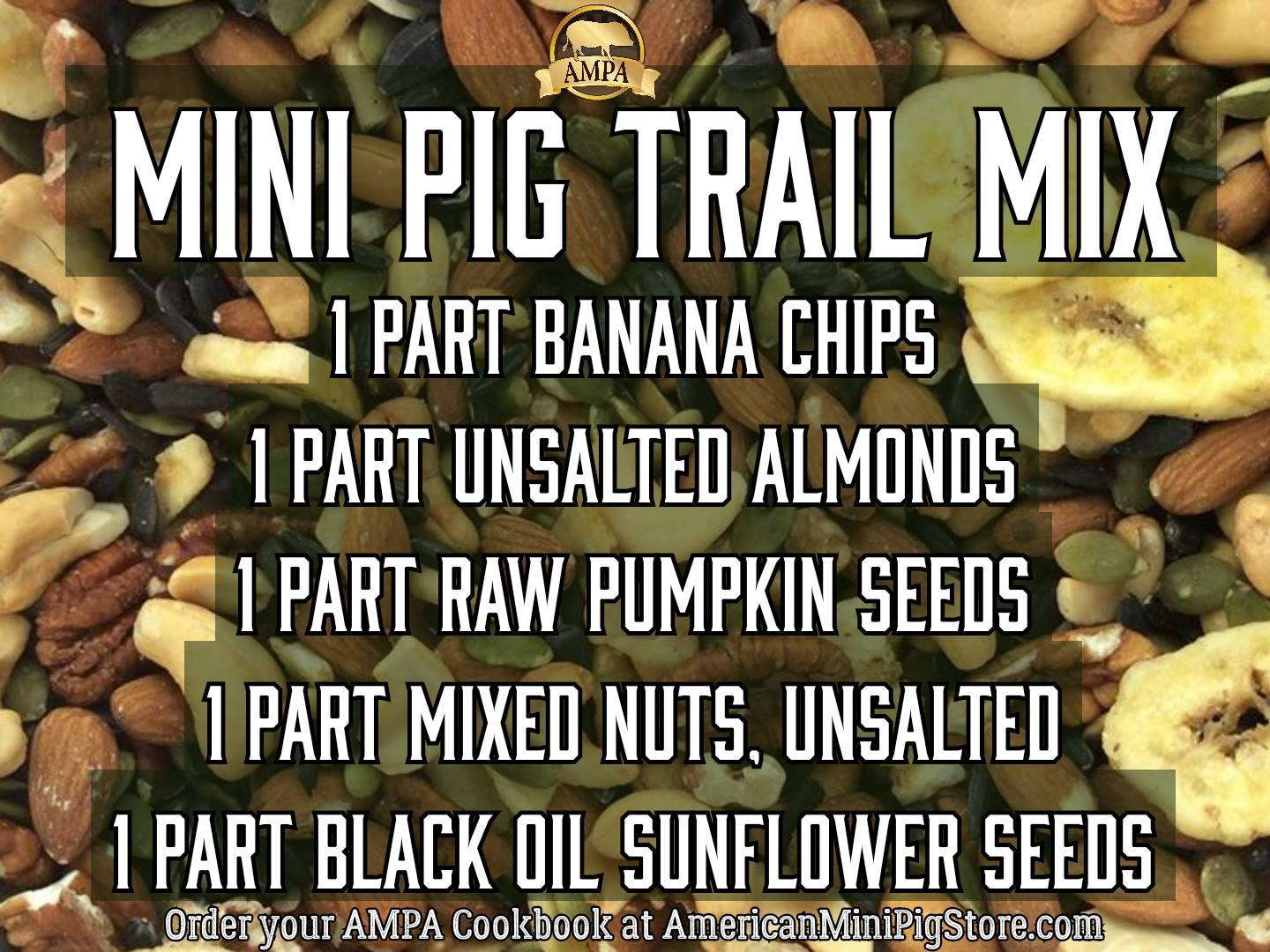 mini pig trail mix natural diet