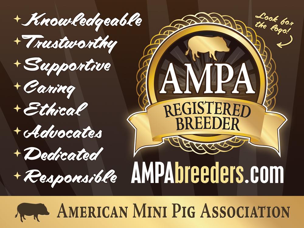AMPAbreeders.com
