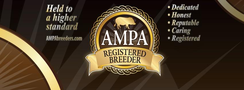 AMPA Breeders
