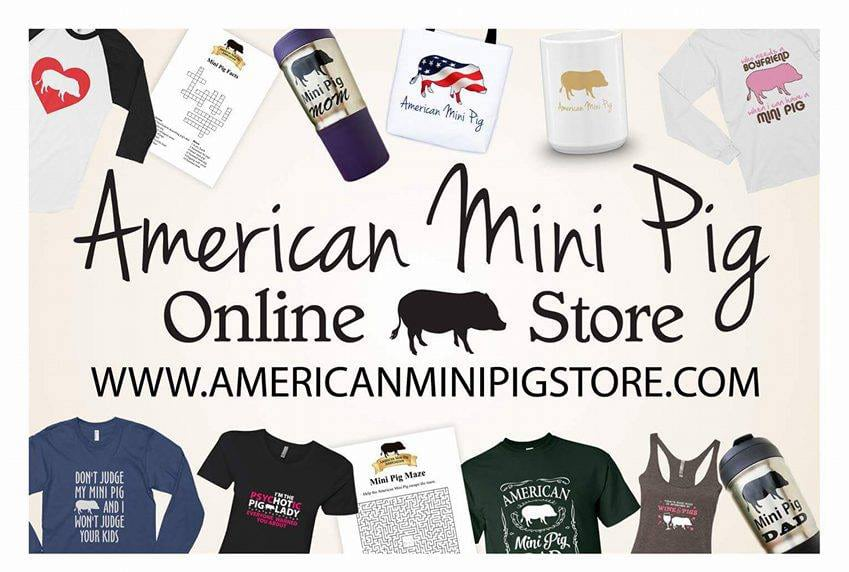 mini pig store, mini pig resources, american mini pig store