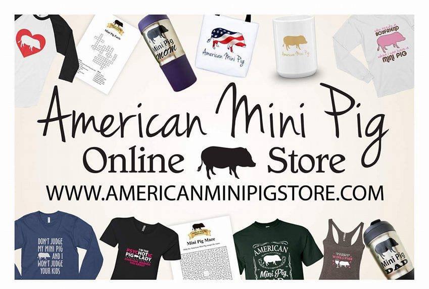 mini pig store ad
