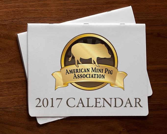 mini pig calendar