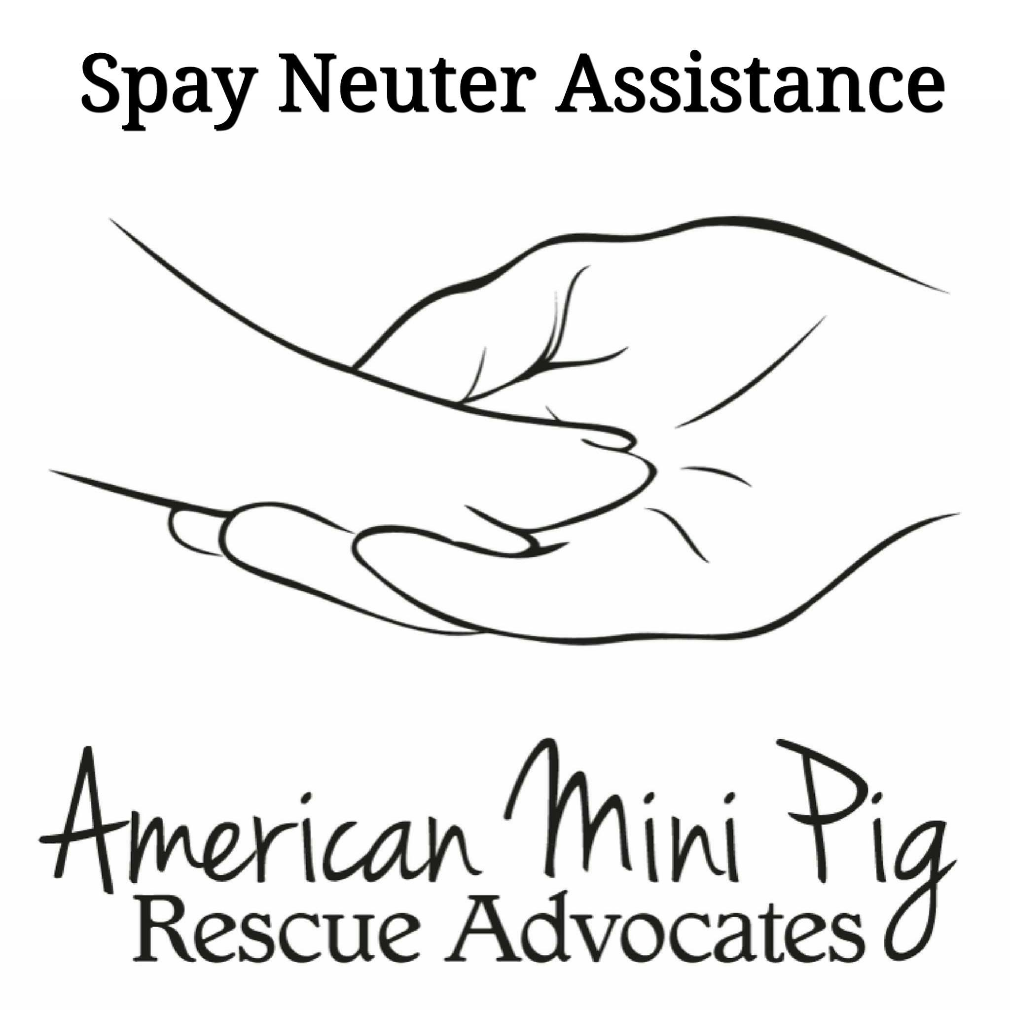 mini pig neuter assistance