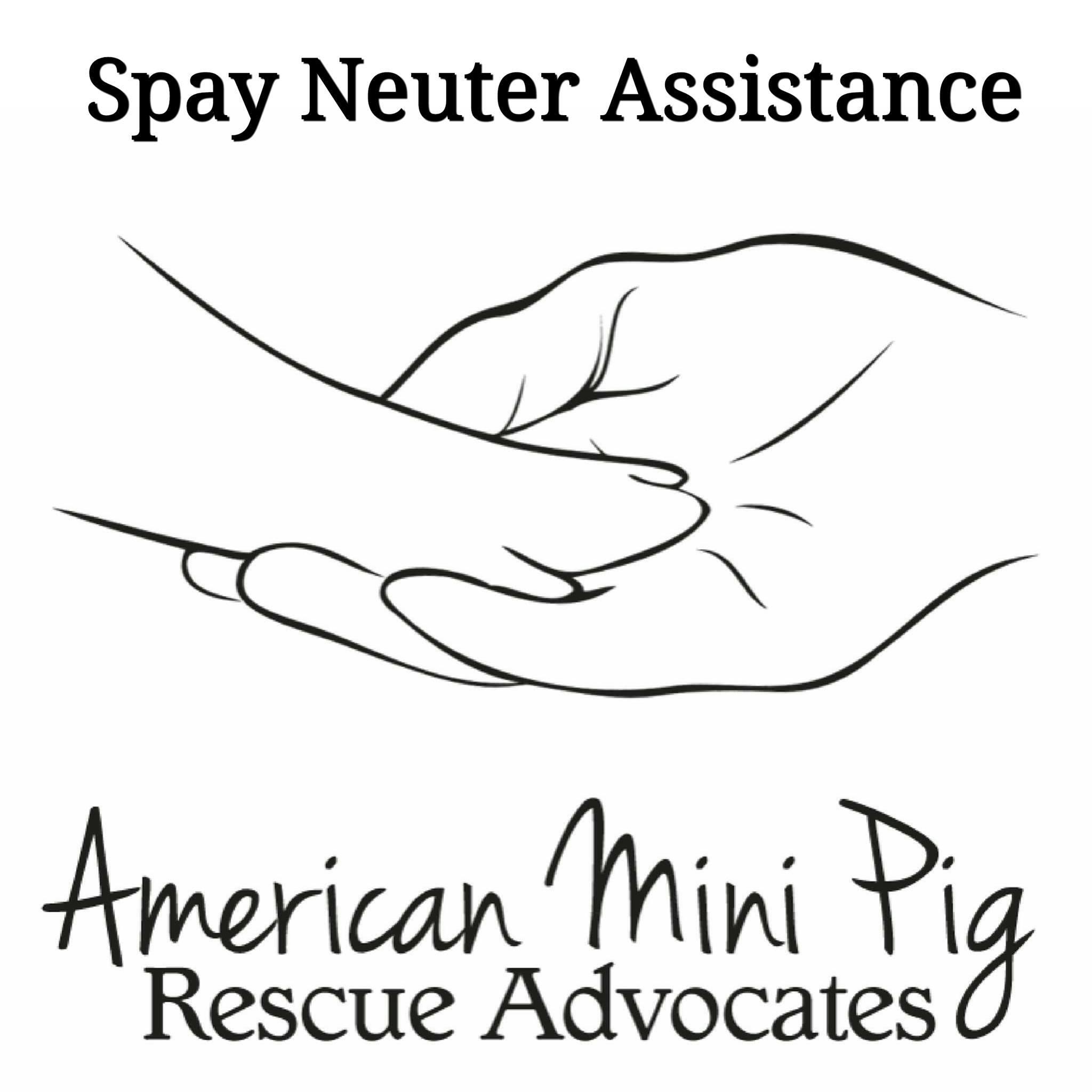 mini pig neuter assistance