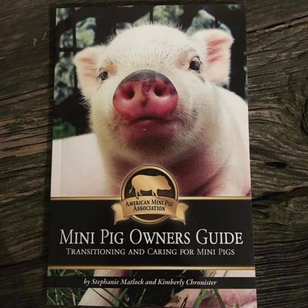 mini pig owners guide, mini pig book, ampa book