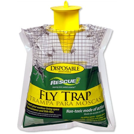 disposable-fly-trap