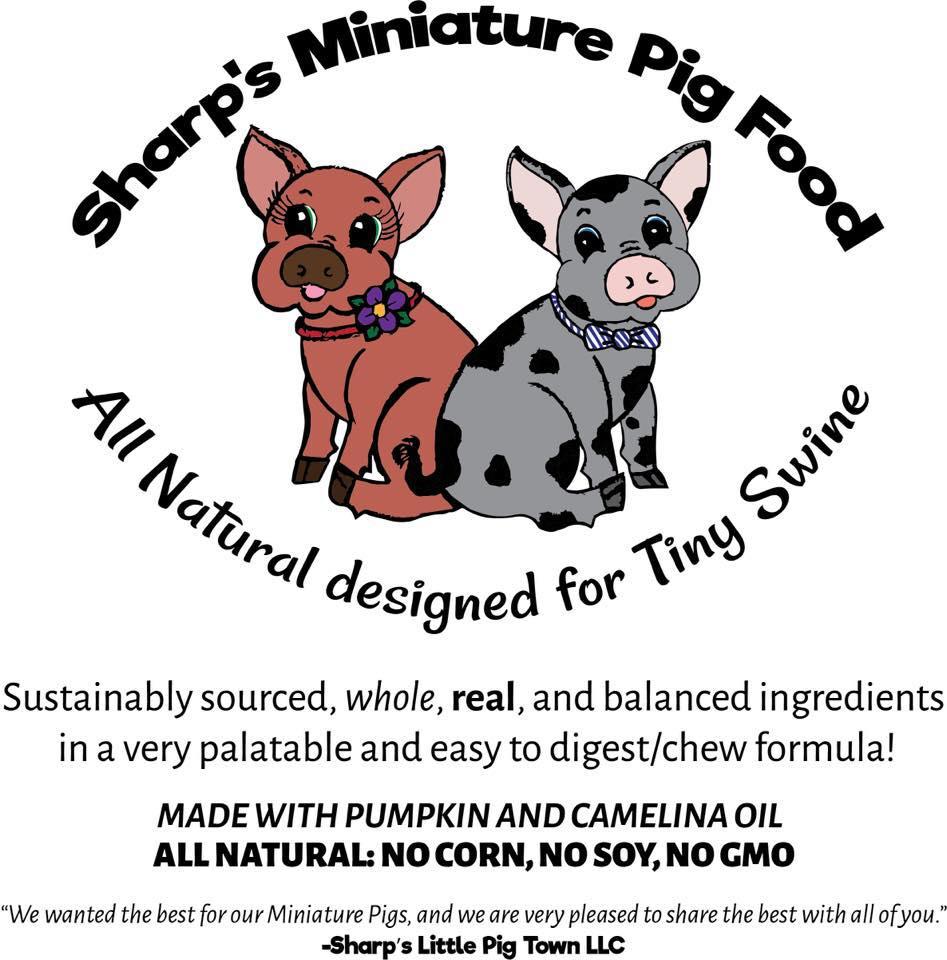 mini pig natural food