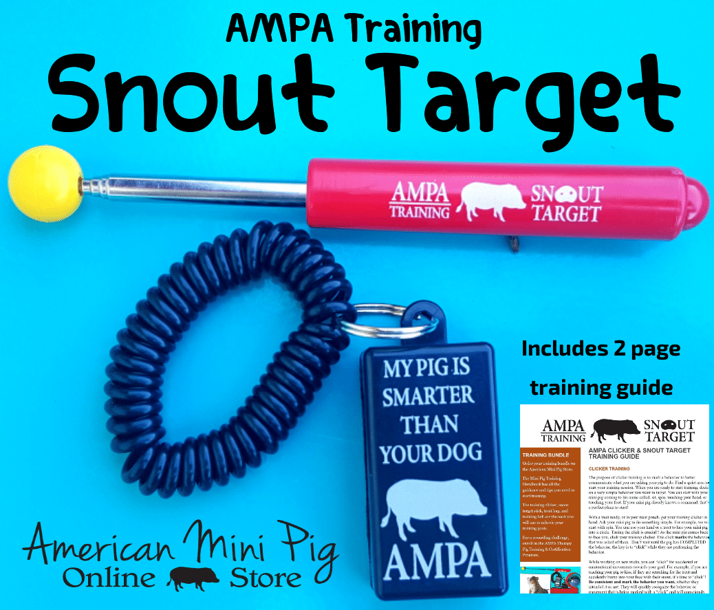 ampa therapy pet program