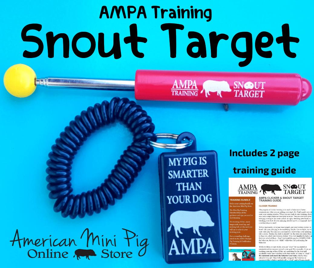 ampa therapy pet program