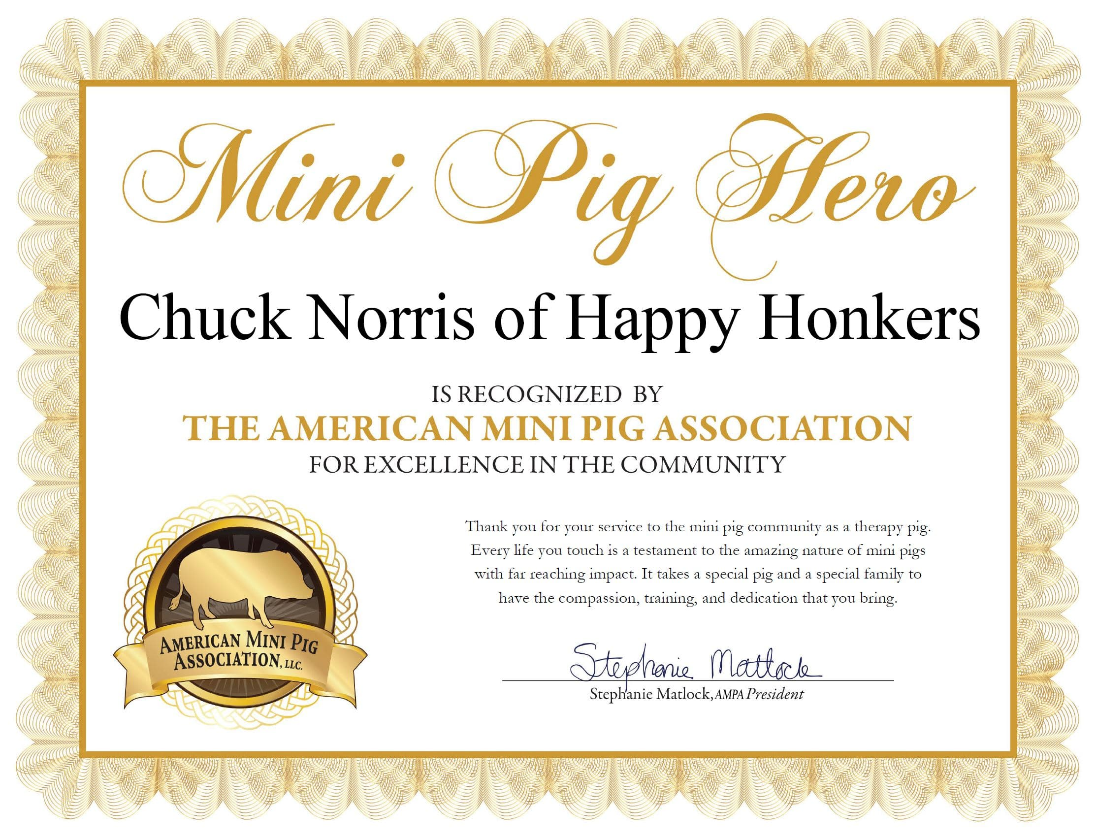 Chuck Norris Therapy Pig