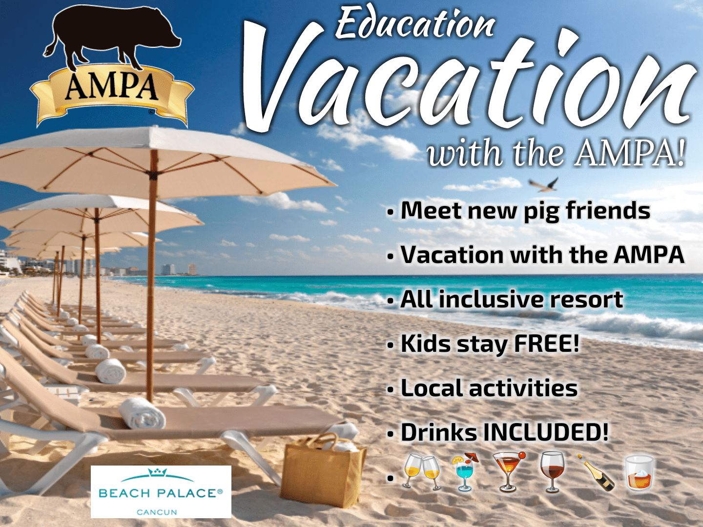 ampa vacation, mini pig vacation
