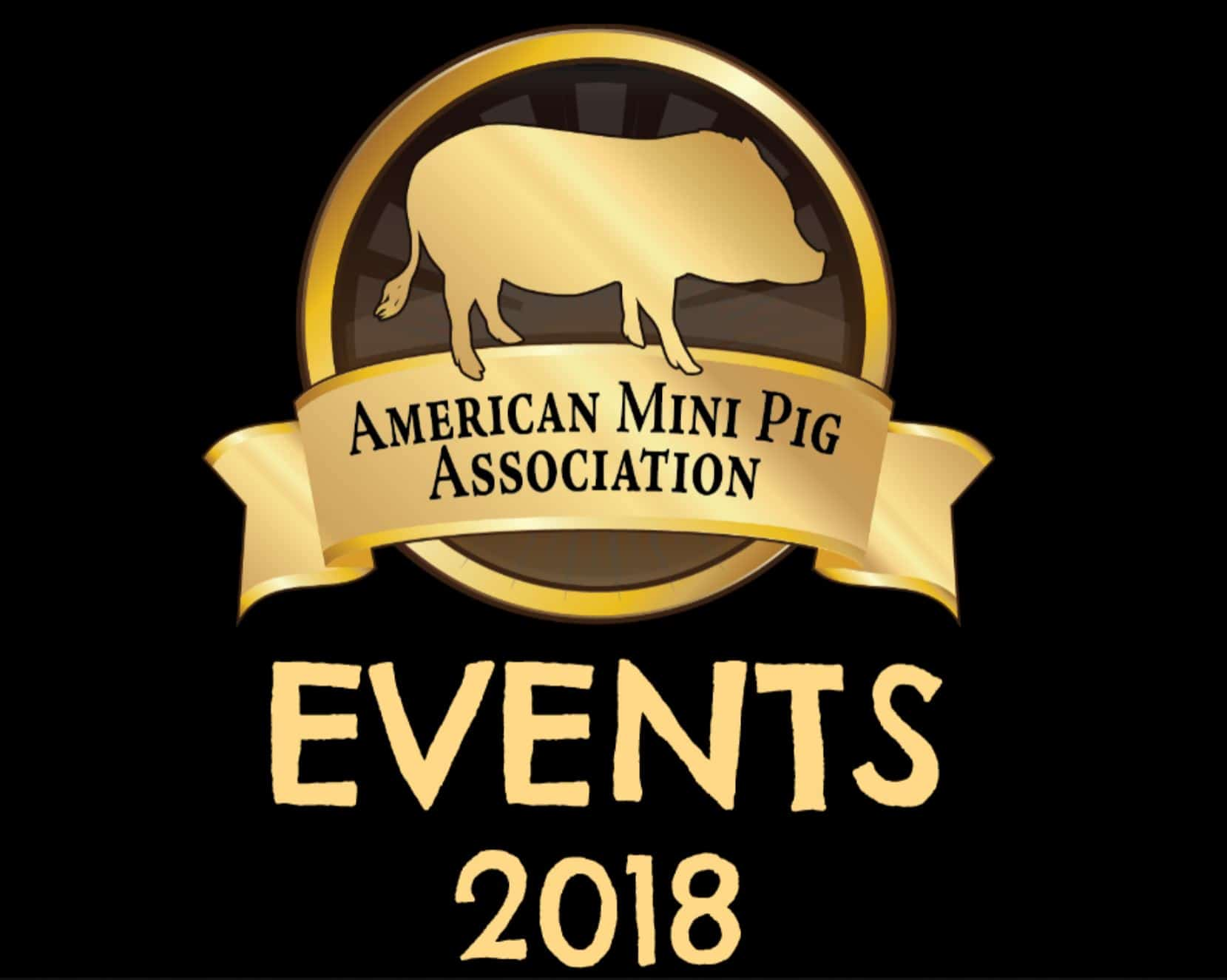 AMPA Mini Pig Events 2018