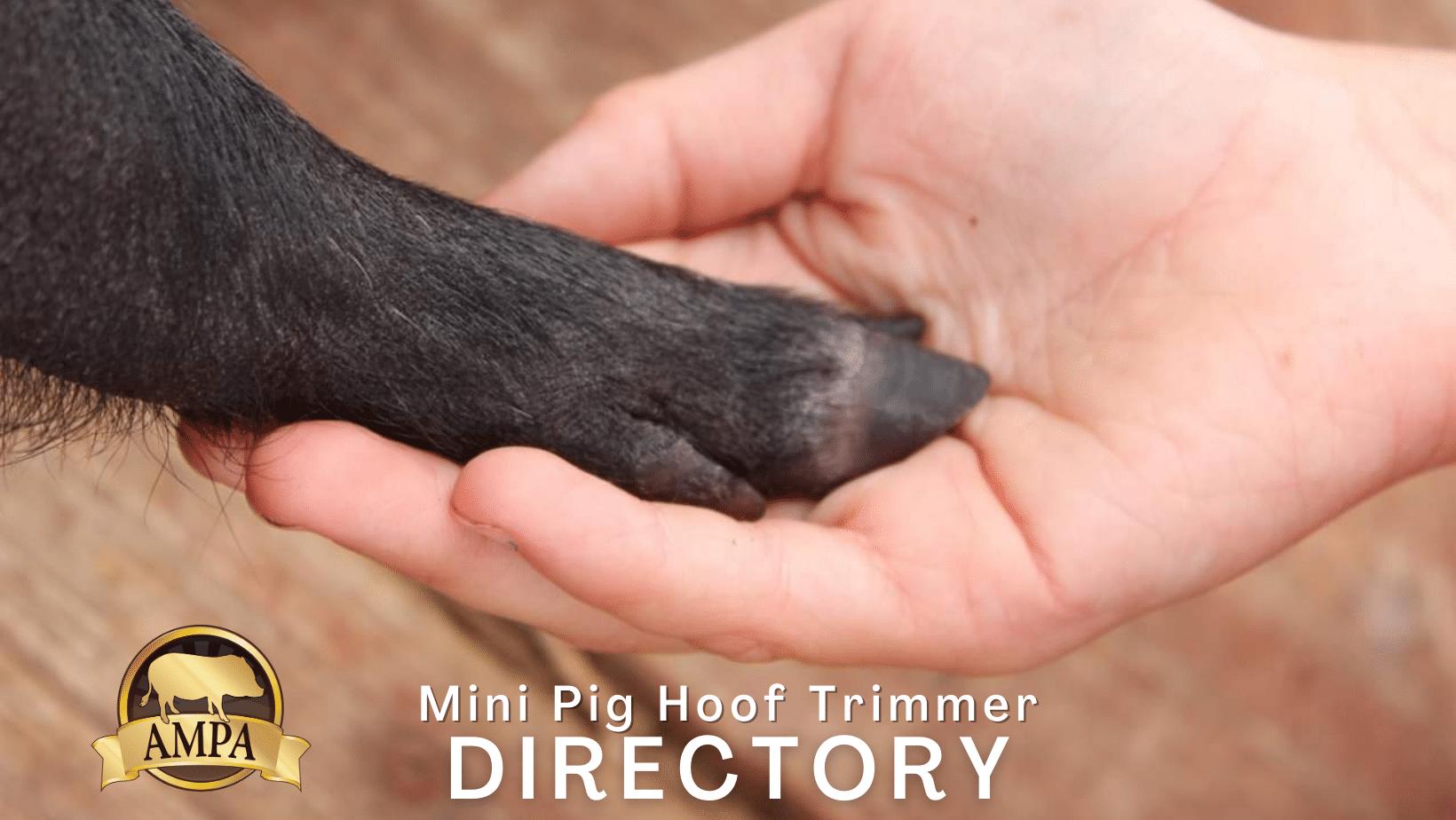 mini pig hoof trimmer directory