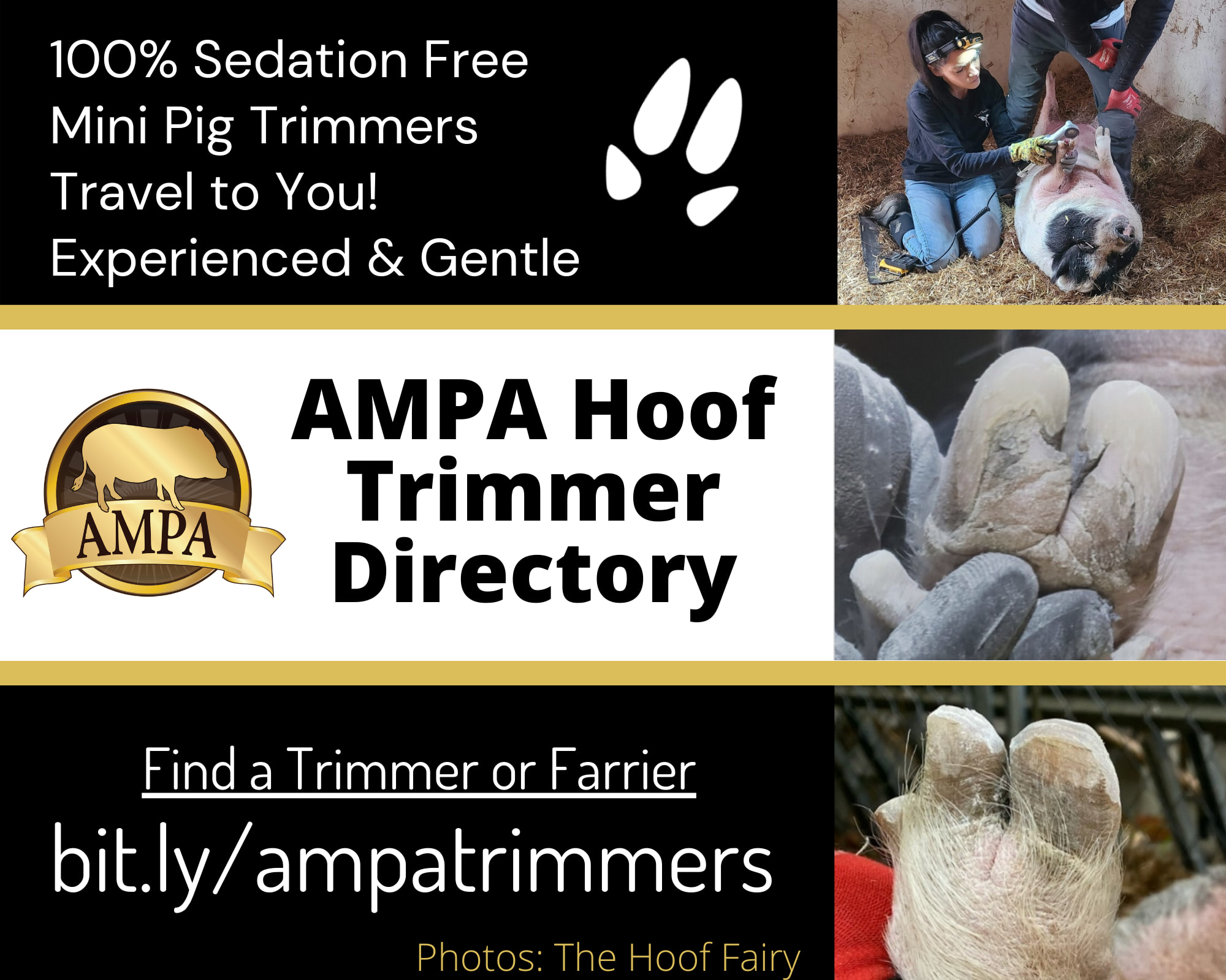 AMPA Hoof Trimmers