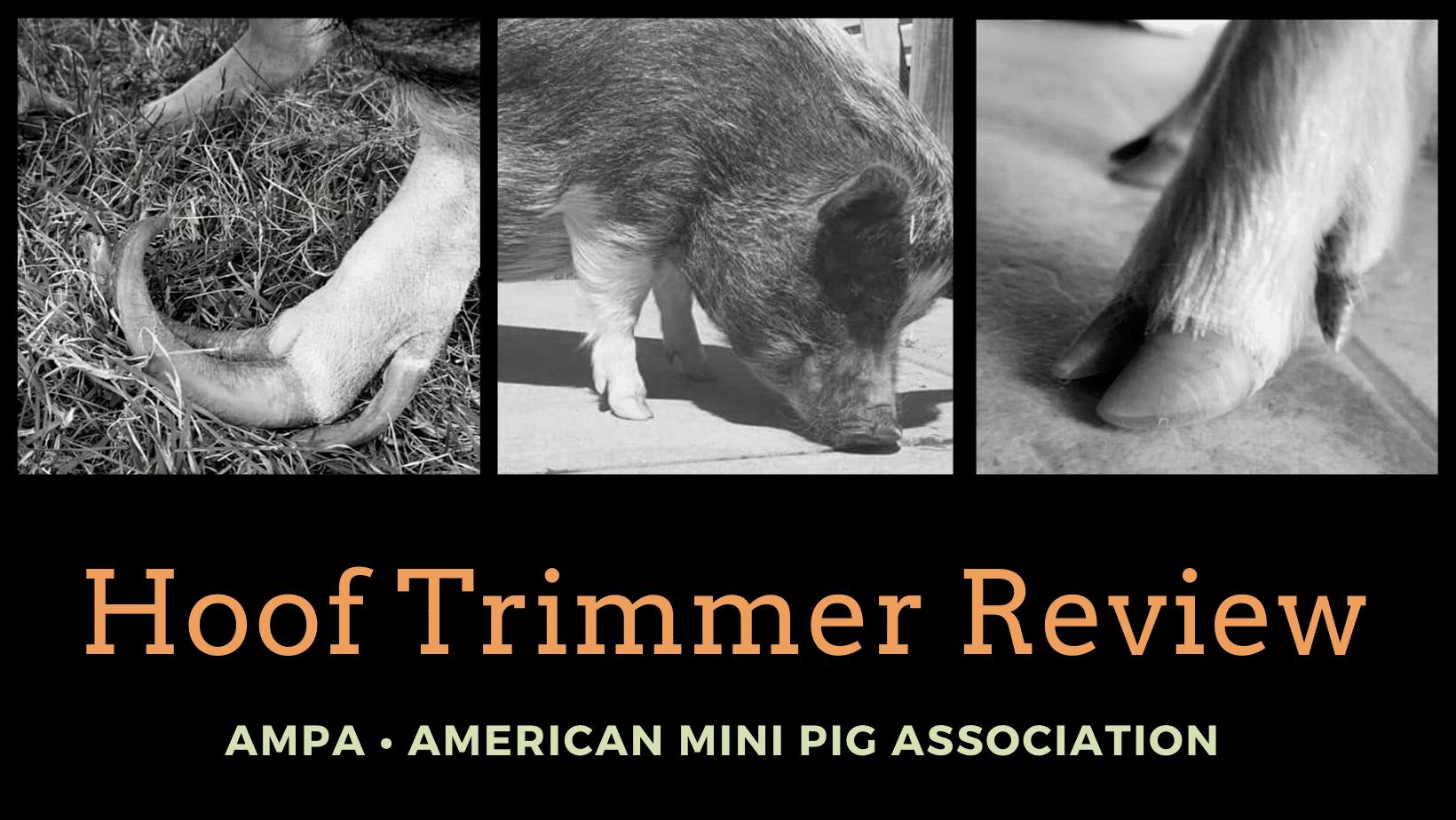 mini pig hoof trimmer reviews