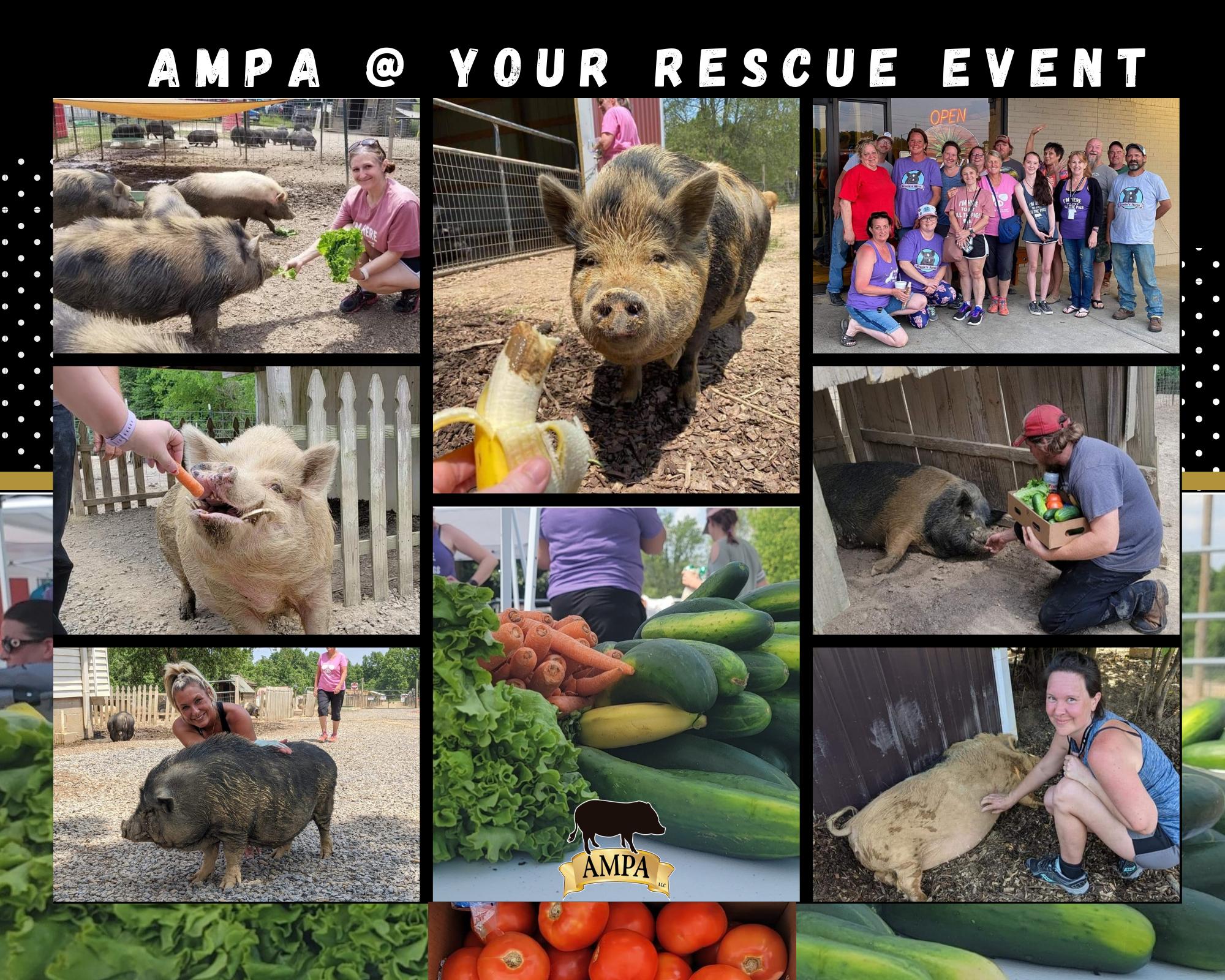 ampa rescue event